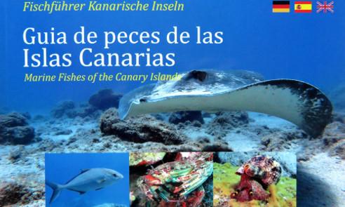 Guia de peces de las Islas Canarias | tauchen auf Teneriffa